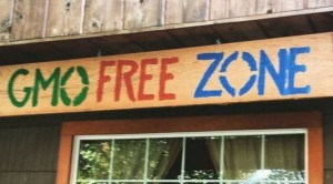 GMO Free zone - house sign